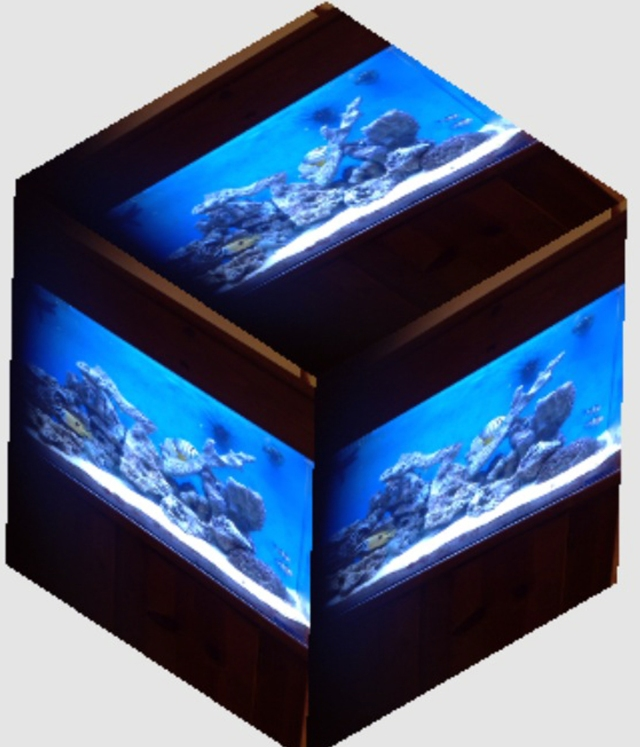 here's the cube feature shot of our fish tank